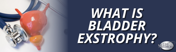 what is bladder exstrophy